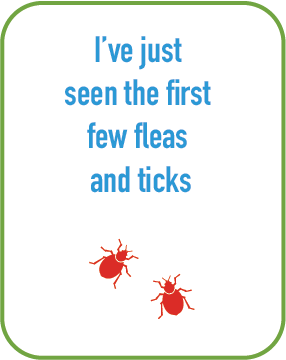 I've seen the first few fleas and ticks